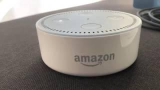 Amazon Echo Vs.  Echo Dot - Was lohnt sich mehr?!