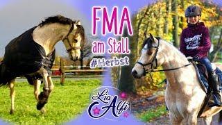 Lia & Alfi - Herbst FMA am Stall