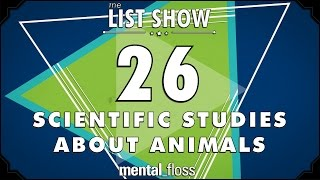 26 Scientific Studies about Animals  - mental_floss List Show Ep. 444