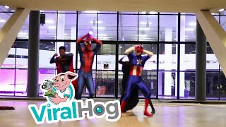 Superhero Dance Routine  || ViralHog
