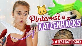 Die COOLSTEN KATZENHACKS im Test feat. SPECIAL GUESTS 🐱 #testingtuesday | SNUKIEFUL