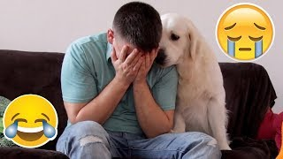Funny Dog Reaction to me Crying - PRANK (BEST REACTION EVER)