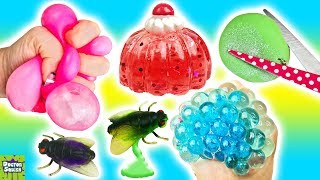 Squishy Cutting Week Day 2! Glitter Mesh Ball And Japanese Jelly Squishy! Doctor Squish