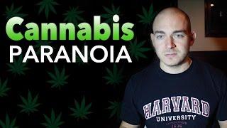 Cannabis Paranoia
