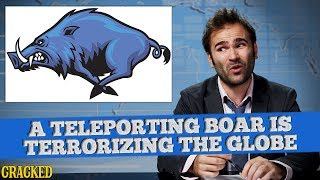 SOME NEWS SPECIAL REPORT: This Boar Is A Weapon of Mass Destruction