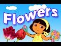 Flowers Name for kids | Flowers Name Vid...mp3