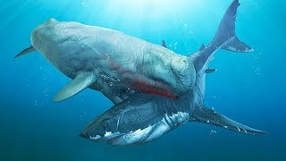 TOP 8 MEGALODON MOST LETHAL ENEMIES