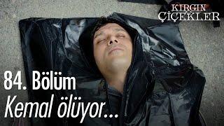 Kemal ölüyor... - Kırgın Çiçekler 84. Bölüm - atv