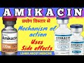 Amikacin injection / Amikacin 500mg inje...mp3