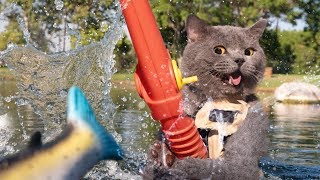 When Cats Go Fishing