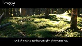 Surat Ar-Raĥmā || most beautiful Quran recitation || تلاوه خاشعة جدا من سورة الرحمن