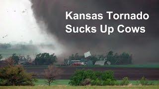 Kansas tornado sucks up cows and blows farm apart