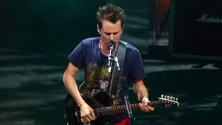 Muse Live Shepherd