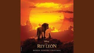 """""""El León Rey Duerme Ya"""" El Rey León (2019) Soundtrack"""