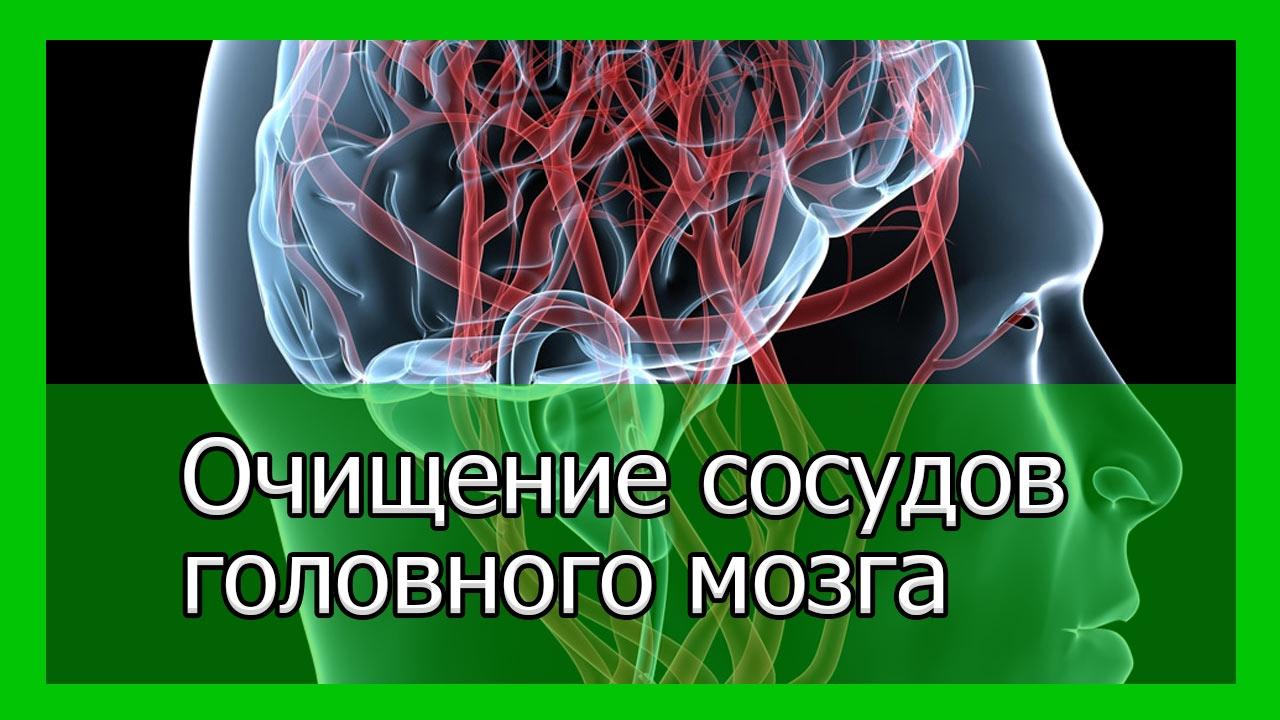 Рецепт для очищения сосудов головного мозга