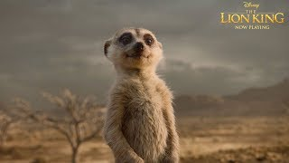 """""""Be Our Guest"""" TV Spot   The Lion King"""