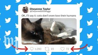 How cringe-worthy is that tweet? Behold,