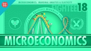 Marginal Analysis, Roller Coasters, Elasticity, and Van Gogh: Crash Course Econ #18