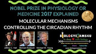 Nobel Prize in Physiology or Medicine 2017 Explained Circadian Rhythm