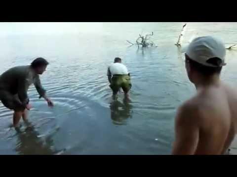 рыбалка в химках на фидер