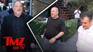 Harvey Weinstein Fired   TMZ TV