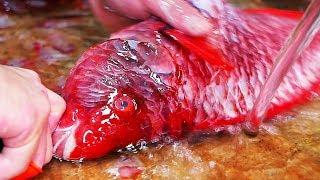 Japanese Street Food - RED BEAKFISH Sushi Fried Seafood Soup Okinawa Japan