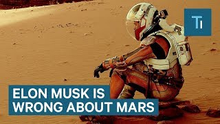 Elon Musk Shouldn