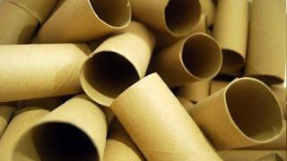 11 Best Life Hacks with Toilet Paper Rolls