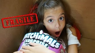 I Mailed Myself in a Box to Hatchimals HQ and got the NEW HATCHIMALS SURPRISE!!!