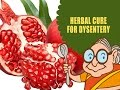 Dysentery Treatment - Natural Ayurvedic ...mp3