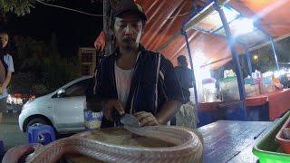 JAKARTA - EATING COBRA SNAKE
