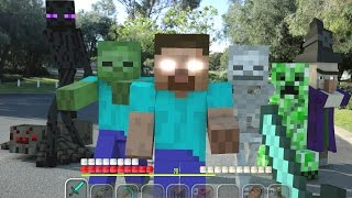 Minecraft In Real Life | Lone Survivor