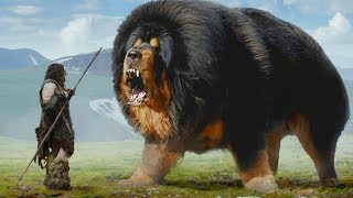 Dogs 10,000 Years Ago