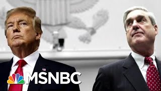 Why Did Mueller Refute The Buzzfeed News Report On President Trump & Cohen? | The 11th Hour | MSNBC