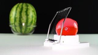 Aqualinos in Wassermelone gezüchtet danach gequält 🍎