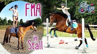 Lia & Alfi - FMA Spaß mit Calle und Alfi