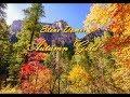 "Steve Domer ""Autumn Gold""mp3"