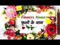Flowers name english with hindimp3