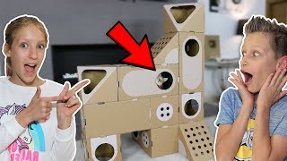 5 STORY BOX FORT HOUSE FOR OUR CAT