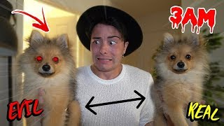 GIVING CLONE POTION TO MY PUPPY AT 3 AM CHALLENGE!! *EVIL TWIN*