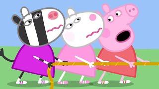 Peppa Pig Episodes | NEW compilation 8 | 1 HOUR | Cartoons for Children