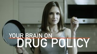 Your Brain On Drug Policy | Rachael Leigh Cook (2017)