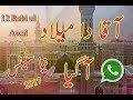 12 Rabi ul Awal Whatsapp status new 2017...mp3