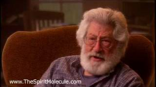 Mathematician Compares DMT Experience with LSD Experience