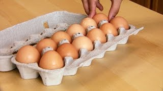 Could You Uncook an Egg?