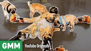 Covered in Peanut Butter and Pugs | THAT