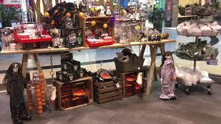 Umfrage in Passau: Feiern Sie Halloween?