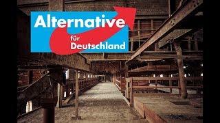 Doofe AfD! oder wie Demokratie NICHT funktioniert - Kuchen Talks #241