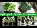 Home made Deep water hydroponic systemmp3