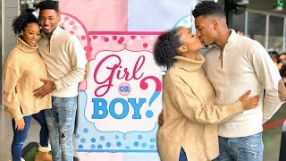 Our Gender Reveal GIRL/BOY OR TWINS?  | VLOGMAS DAY 15